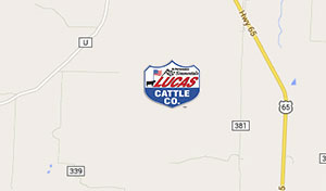Lucas Cattle Co Map